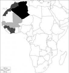 Origine Afrique.jpg
