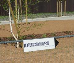 Pancarte 4.JPG