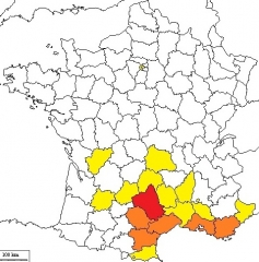 histoire,occitanie,presse,médias,journalisme